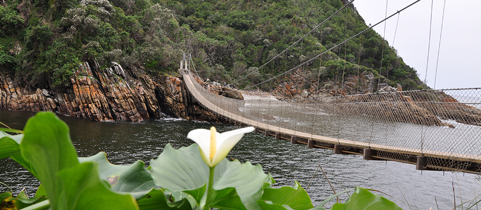 Garden Route Accommodation South Africa | Tsitsikamma Gardens Self-Catering Accommodation